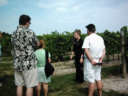 2005-0818-inniskill-grapes.jpg