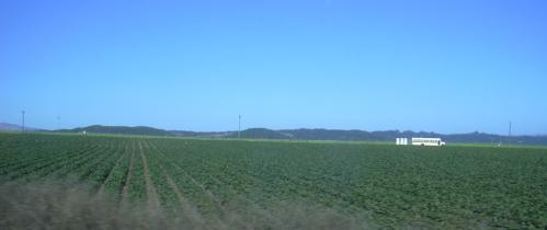 2003-0810-los-angeles-to-san-francisco-farmland.jpg