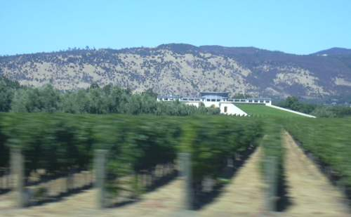 2003-0811-napa-valley-view-from-car.jpg