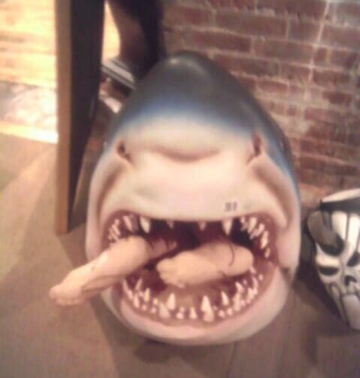 2005-0824-halloween-adventure-floor-shark.jpg