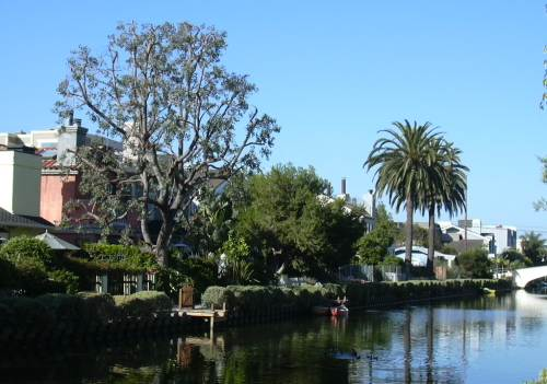 2003-0810-venice-canal-trees-los-angeles.jpg