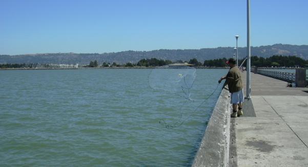 20030811 scott granneman for Pier fishing net
